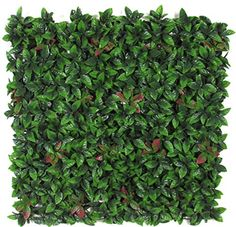 Siepe artificiale Photinia Luxe (New con foglie alta resistenza a bordo frastagliato) 98x98 cm circa Verdevip http://www.amazon.it/dp/B0081RCUWU/ref=cm_sw_r_pi_dp_6D1rwb1MSQJ27