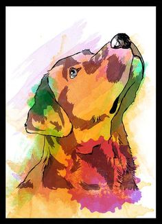 Quadro Labrador Retriever - Dog in Art Labrador Retrievers, Labrador Retriever Dog, Arte Pop, Dog Paintings, Dog Tattoos, Watercolor Animals, Dog Portraits, Dog Art, Dog Love