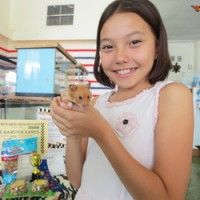 Feathers 'N Fins presents The Hamster Games