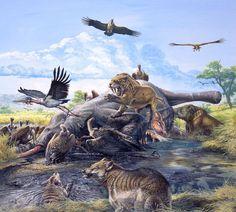 An array of predators, including dire wolves and smilodon, quarrel over a mastodon carcass at the La Brea tar pits in Pleistocene California. Prehistoric Wildlife, Prehistoric World, Prehistoric Creatures, Jurassic Park, Jurassic World, Vida Animal, Alien Creatures, Extinct Animals, Dire Wolf