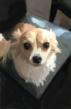 Chiwawa Animal Paintings, Animal Drawings, Chihuahua Art, Dog Artwork, Dog Portraits, Chiwawa, Cute Art, Art Projects, Illustration Art