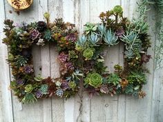 square wreathes or flower frames