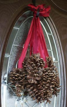 Pinecones! by amparo
