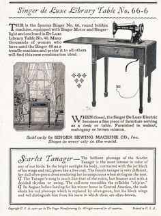 Original advertisement for Singer de Luxe Library Table No. 66-6    Though this seems identical to the No. 40... curious.
