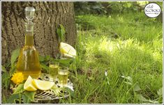 ildi KOKKI : Citromlikőr (Limoncello) Limoncello, Table Decorations, Bottle, Furniture, Home Decor, Decoration Home, Flask, Home Furnishings, Interior Design