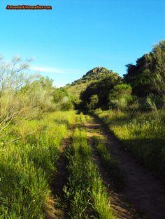 Camino del cabril