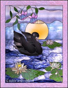 black swan with lavender stained glass