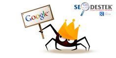 SEO Destek - Arama Motoru Optimizasyonu Google'da Birinci Sayfa  http://www.seodestek.com.tr/  #seo #seodestek #aramamotoru