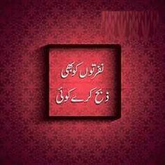 Wise Quotes, Urdu Quotes, Poetry Quotes, Urdu Poetry, Quotations, Qoutes, Love Hurts, My Love, Silent Words