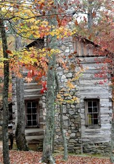 SEASONAL – AUTUMN – a cabin during the changing of the new england leaves.