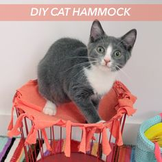Make this cute cat hammock from an old T-shirt and a storage bin!