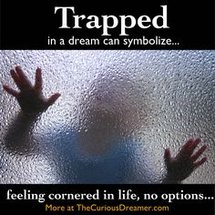 trapped dream symbol in The Curious Dreamer Dream Dictionary Facts About Dreams, Dream Dictionary, Moonage Daydream, Dream Symbols, Stages Of Sleep, What Dreams May Come, Dream Meanings, Sleep Dream, Dream Journal