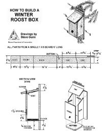 images about DIY Birdhouses on Pinterest   Bird house plans       images about DIY Birdhouses on Pinterest   Bird house plans  Birdhouses and Owl house