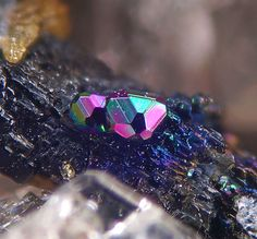 Magnetite in Biotite crystal from Italy (by Di Domenico Dario)
