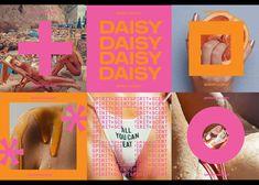 Perfumery Daisy Smells Of Successful Branding Web Design, Layout Design, Icon Design, Daisy Brand, Paper Bag Design, Sports Graphic Design, Typography Logo, Logos, Instagram Story Ideas