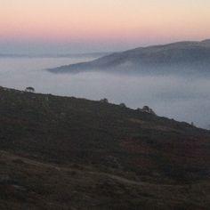 Nevoeiro e céu cor de algodão-doce!  Indo pra casa. ❄️