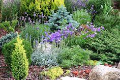 Luxury alpine garden