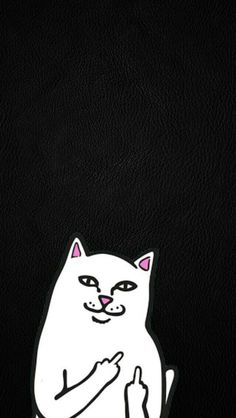 Ripndip Wallpapers chido