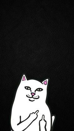 RIP n DIP white cat w/ middle finger Lockscreens