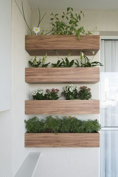 New Garden Ideas Vertical Greenhouses 53 Ideas New - Jardin Vertical Fachada Plant Wall, Plant Decor, Garden Lighting Diy, Patio Fence, Decoration Plante, Herbs Indoors, Balcony Design, Glass Garden, Balcony Garden