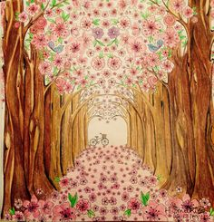 Spring Blossoms From Joyous Blooms To Color By Eleri Fowler In Polychromos Pencils