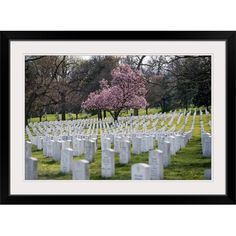 Great Big Canvas 'Arlington National Cemetery in the Spring' Photographic Print Format: White Frame, Size: H x W x D Military Cemetery, Arlington Virginia, National Cemetery, Cherry Tree, Big Canvas, Print Format, Funeral, Bloom, Spring