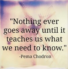 Nothing ever goes away until it teaches us what we need to know -Pema Chodron