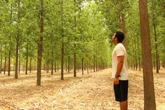 Anurag Bhatia for @paytm #withnature on Indi.com. Check it out at http://indi.com/92sx3