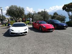 White, Red or Blue???