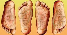 Massage your feet for 15 minutes before going to bed every day .Remember that is important to massage the entire feet for the whole body, or focus on a certain point to cure chronic pain or a certain illness. Self Massage, Foot Massage, Massage Tips, Health Tips, Health And Wellness, Massage Wellness, Reflexology Points, Acupuncture Points, Acupressure Points
