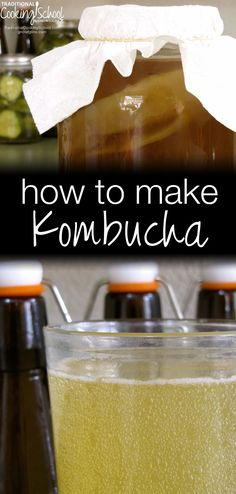 How To Make Kombucha | Kombucha, from Russia, is a widely known and loved fermented, probiotic beverage. Both sweet and sour and naturally carbonated by fermenting gases, many people drink it like soda. Purported health benefits of drinking kombucha are: cancer prevention, arthritis treatment, improved digestion and immune booster. Just a few ounces a day can be helpful in any of these issues! Though you can purchase Kombucha, it's very easy to make and here's how. Never had it? You just…