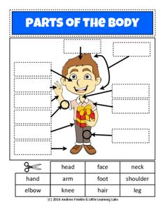 Little Learning Labs - Parts of the Body - Anatomy Worksheet Set Primary Grades from Velerion-Damarke from Velerion-Damarke on TeachersNotebook.com (6 pages) - Get a quick cut-n-paste worksheet set for parts of the body, face, hand, and a dog!