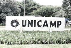 Unicamp está entre as 100 melhores 'novatas' do mundo