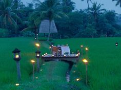 Dinning Experience in the middle of rice fields