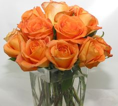 This is an arrangement of orange roses.  See our entire selection at www.starflor.com.  To purchase any of our floral selections, as gifts or décor, please call us at 800.520.8999 or visit our e-commerce portal at www.Starbrightnyc.com. This composition of flowers is generally available for same day delivery in New York City (NYC). RO022