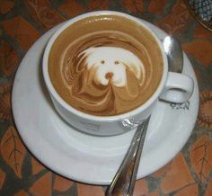 Great ways to make authentic Italian coffee and understand the Italian culture of espresso cappuccino and more! Coffee Latte Art, I Love Coffee, Coffee Break, Coffee Cups, Coffee Coffee, Cappuccino Art, Sweet Coffee, Morning Coffee, Dog Cafe