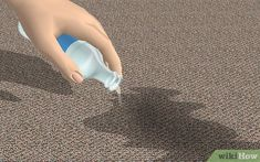 Image titled Get Dog Urine Smell out of Carpets Step 1