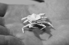 Origamium | Daniel Lanzrath