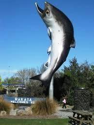The Big Salmon. Rakaia, New Zealand