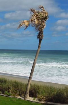 South Florida will fulfill all of your desires! http://www.waterfront-properties.com/pbgevergrene.php
