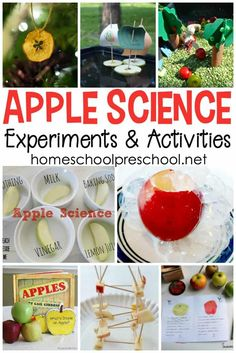 Engaging Apple Science Activities for Preschoolers It's time to gear up for back to school. Add one or more of these science activities to your apples preschool theme. The kids will love it! Preschool Apple Activities, Preschool Apple Theme, Science Experiments For Preschoolers, Autumn Activities, Science For Kids, Preschool Apples, Summer Science, Chemistry Experiments, Science Fun