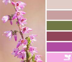 heather hues