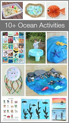 Over 10 Unique & Fun Ocean Activities for Kids (sensory play, math, literature and more!)~ Buggy and Buddy