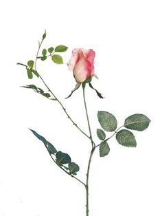 Artificial Rosebud, Pink