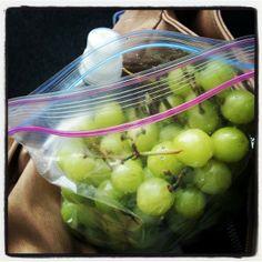 7 Portable Travel Snack Ideas