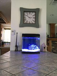 Nano cube fish tank 5 gallons