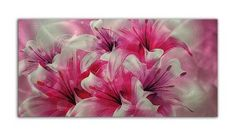 Obraz na Aluminium - Kwiat 4 cm Bright, Plants, Painting, Art, Art Background, Painting Art, Flora, Kunst, Gcse Art