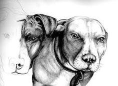 pitbull art - Recherche Google