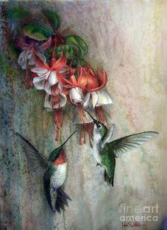 Hummingbirds and Fuschias Pastel