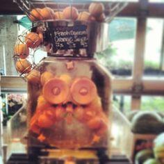 fresh squeezed orange juice machine @Whole Foods Market